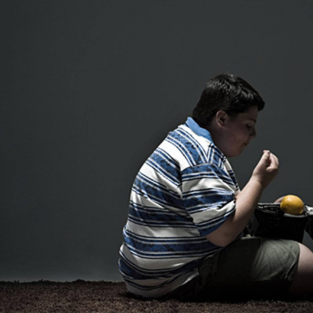 Pola Makan dan Obesitas
